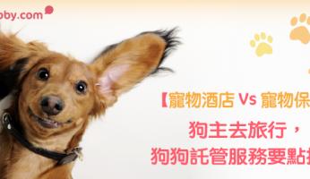 【 寵物酒店 Vs 寵物保姆】狗主去旅行,狗狗託管服務要點揀?